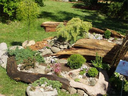 miniatűr örökzöld kert