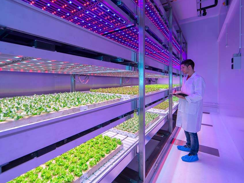 Philips City GrowWise Center