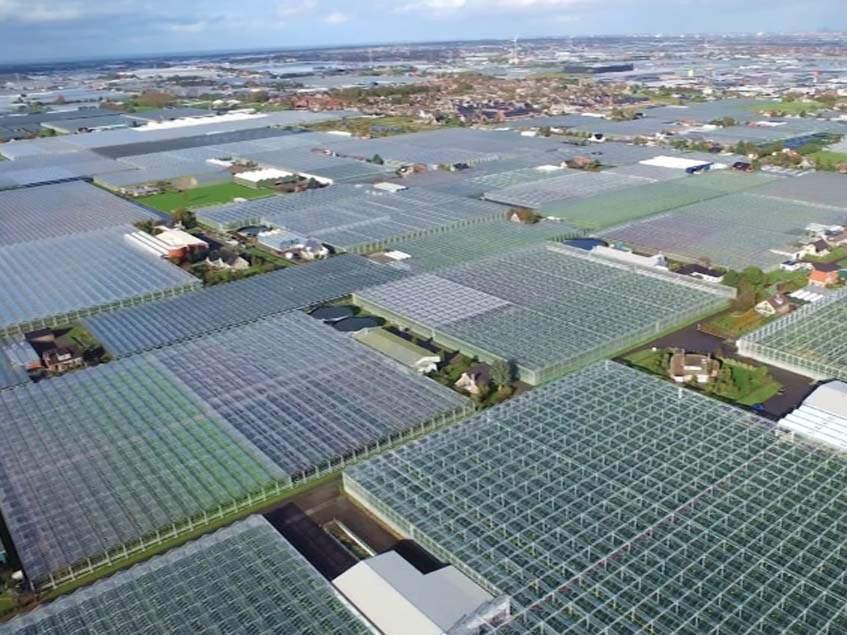 holland üvegház komplexum