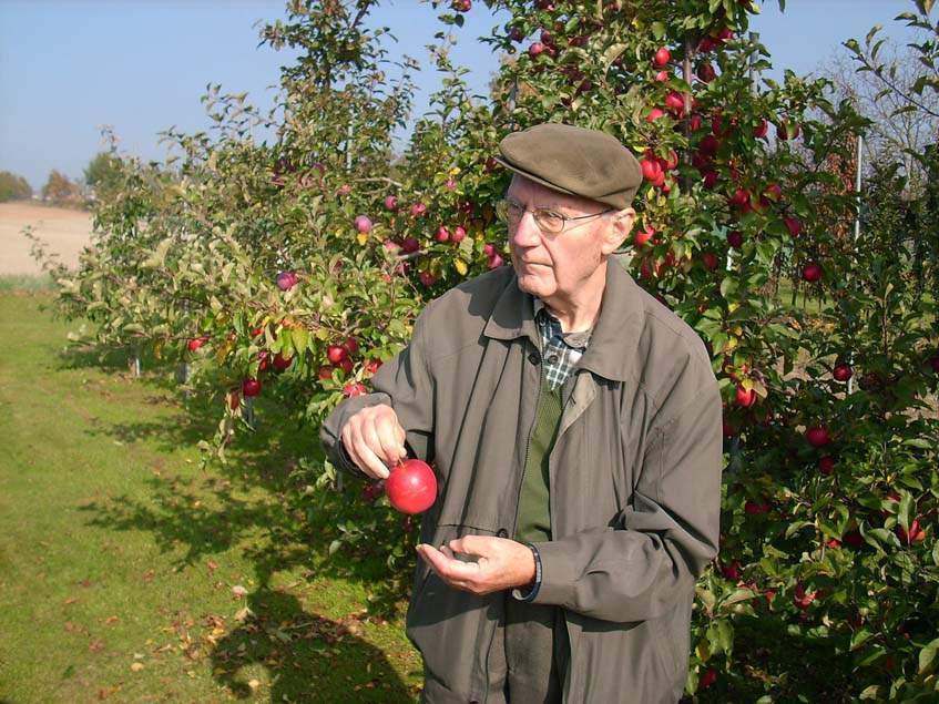 Jaroslav Tupy almanemesítő