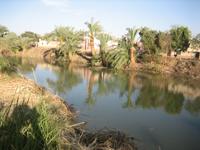 Nilus part mai látképe