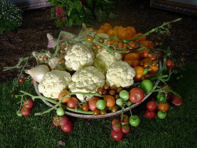 karfiol zöldségdekorációban