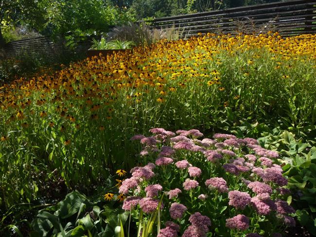a kert színei