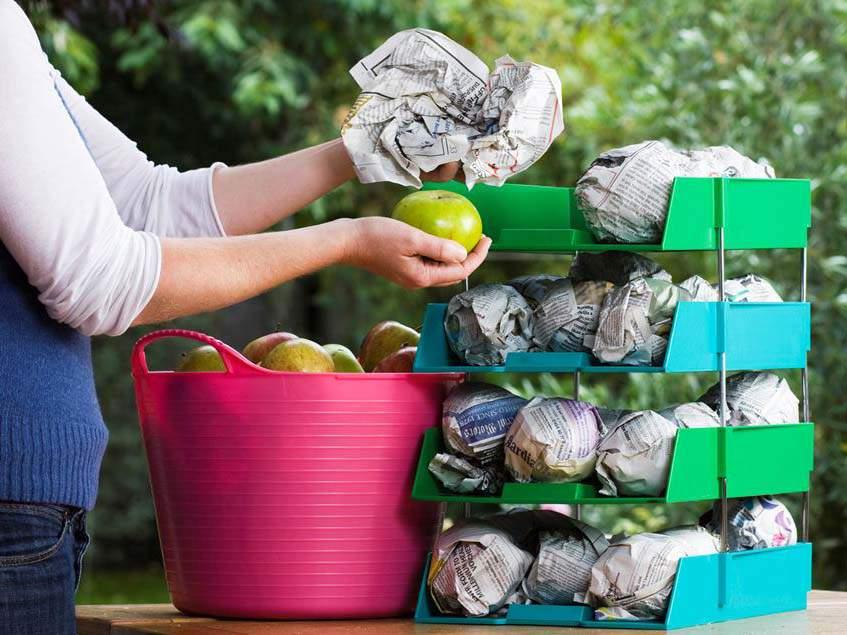 alma tárolása újságpapírban