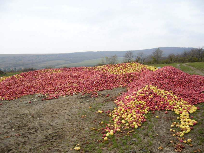 almahegyek