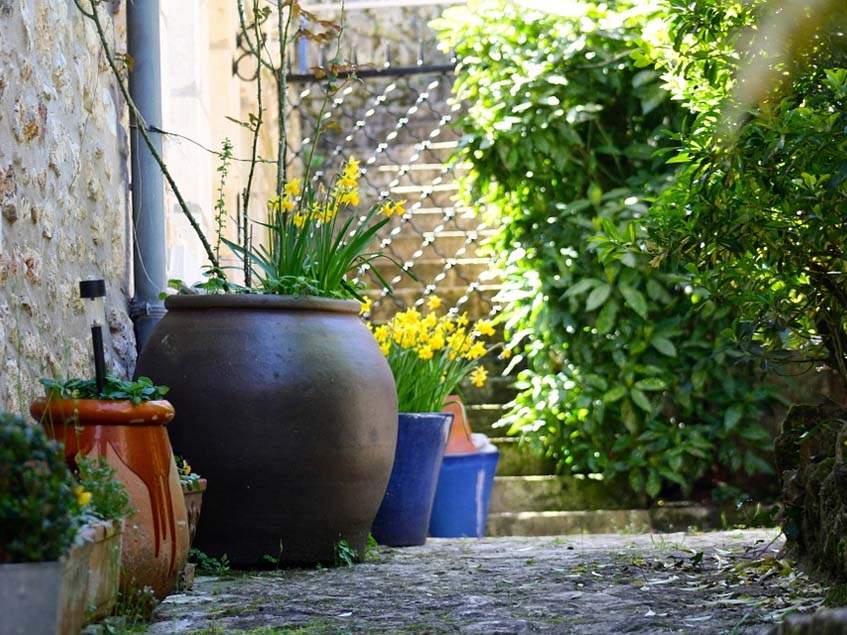 árnyékos kertrészlet