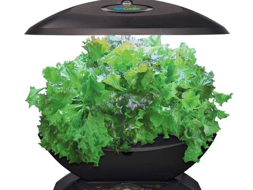 beltéri hidroponikus növénynevelő