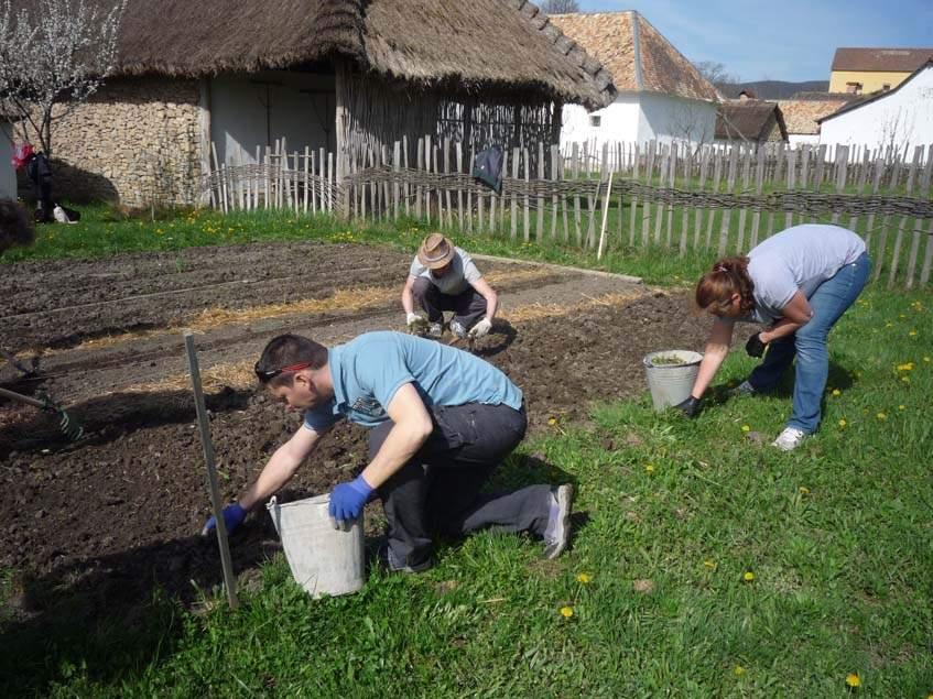 biodinamikus gazdálkodás