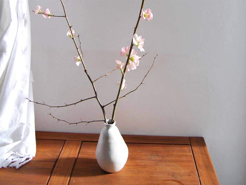 virágzó birs ág