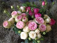 clustar rózsák