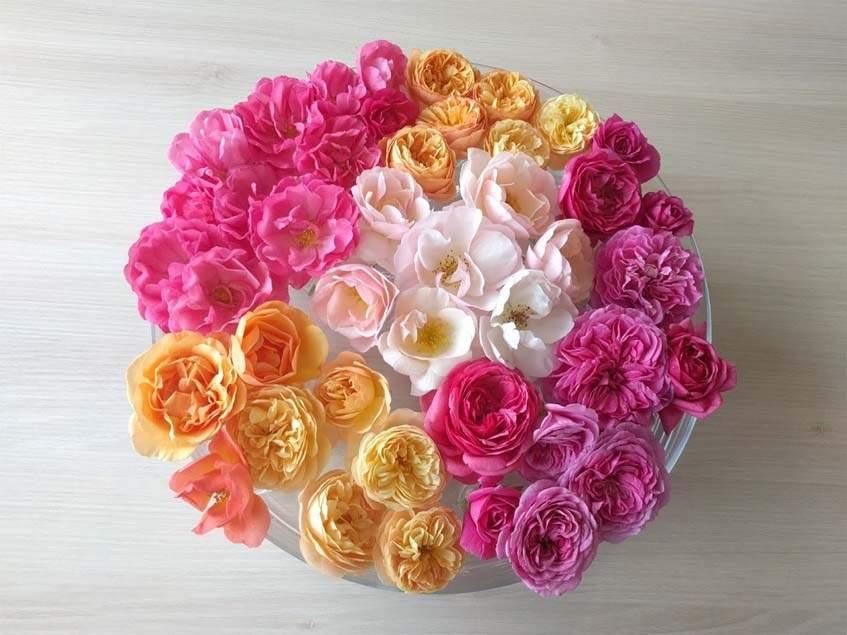 ehető rózsak