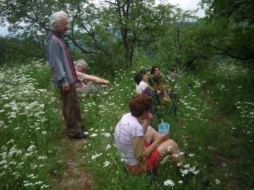 gyógynövény kirándulás a Remete hegyre