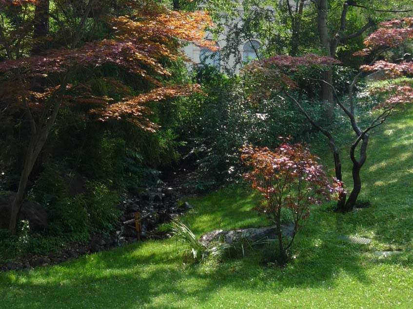 japánkert az allatkertben