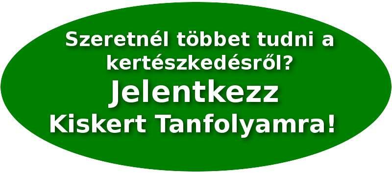 Jelentkezz Kiskert Tanfolyamra!