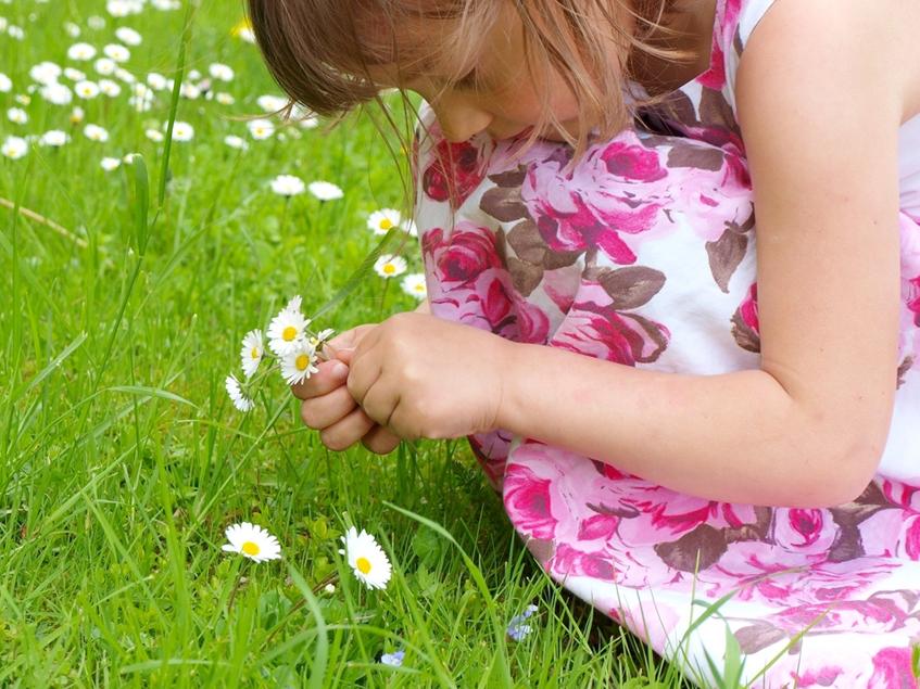 kislány százszorszéppel