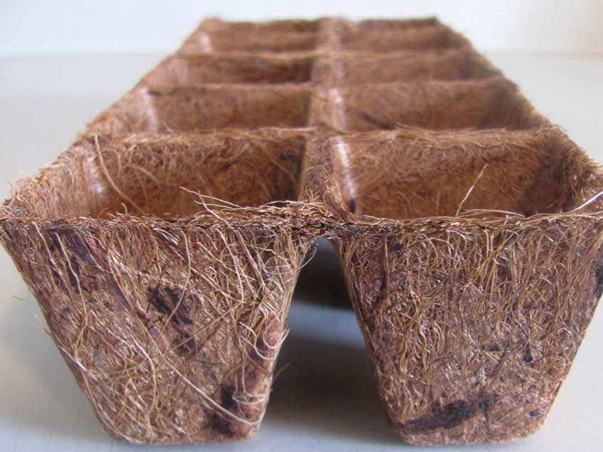 kókuszrost palántanevelő tálca