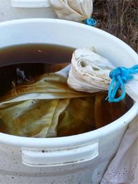 készül a komposzt tea