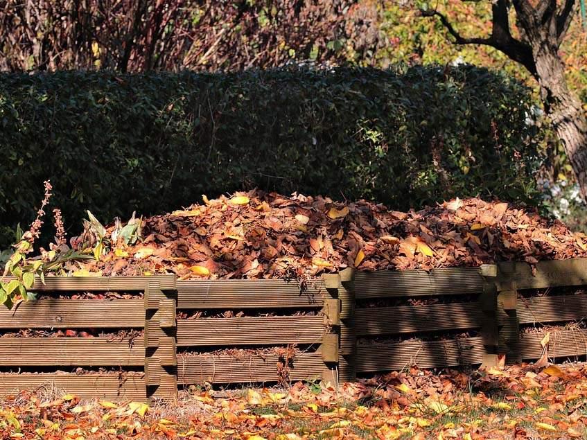 komposztáló ősszel