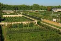 konyhakert Versailles