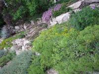 sziklakert lejtőn