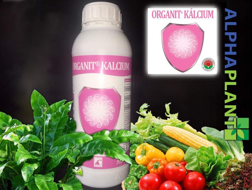 Organit kalcium