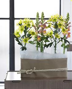 virágváza elrejtése karton doboz