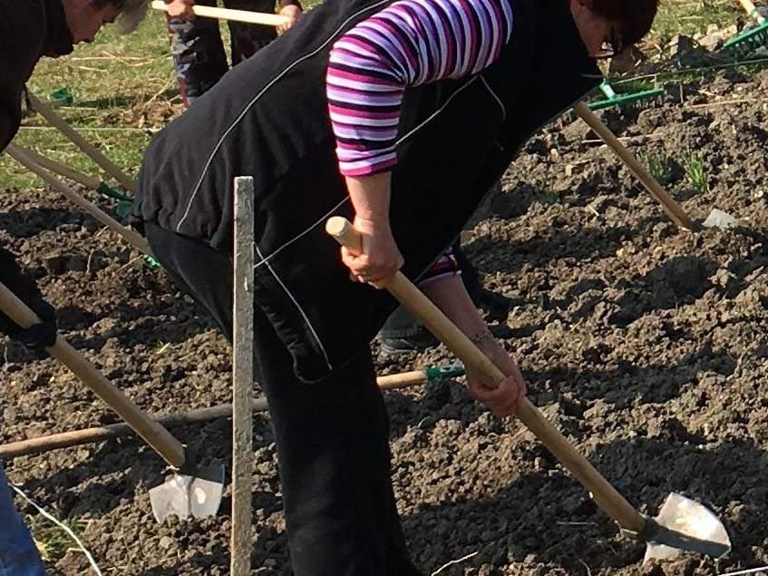 talajelőkészítés