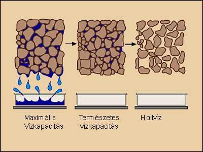 A talaj vízkapacitása