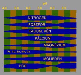A tápanyagfelvehetőseg pH függése