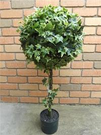 borostyán topiary