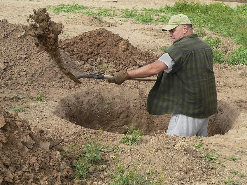 ültetőgödör ásás