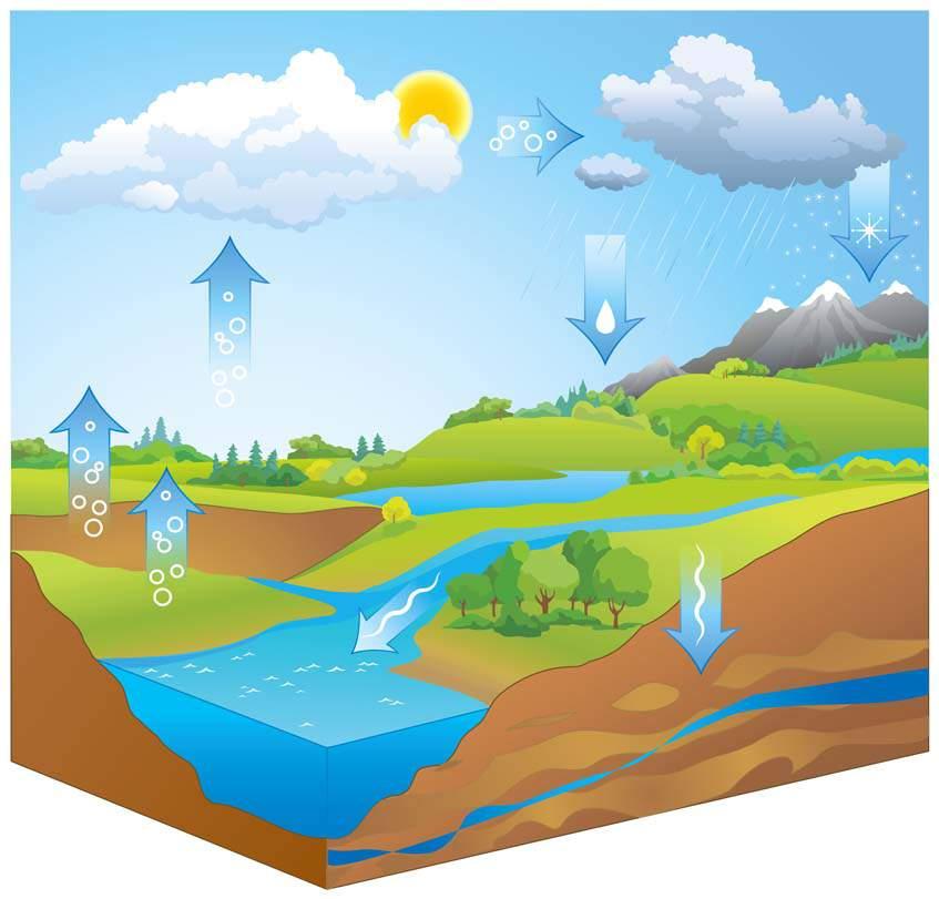 víz útja a talajban